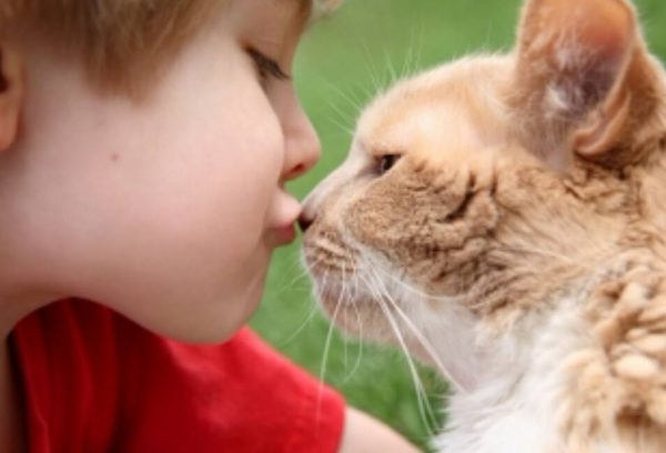 Частый контакт с животными - одна из причин заражения