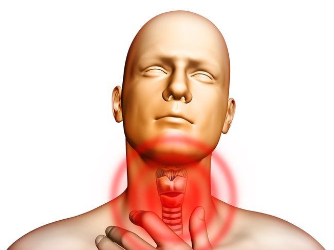 Горло – одно из самых чувствительных мест в организме человека