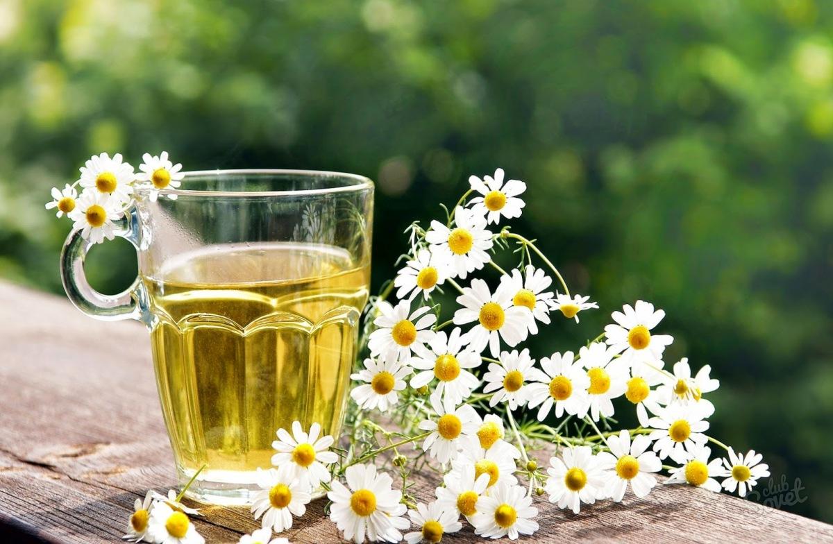 Лечить сальмонеллез можно с помощью отвара из соцветий ромашки