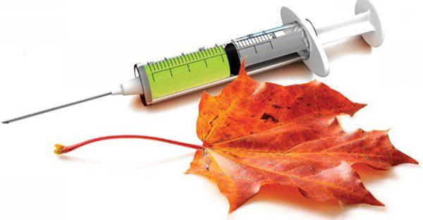 Прививка от гриппа - это лучшее средство для защиты от простуды