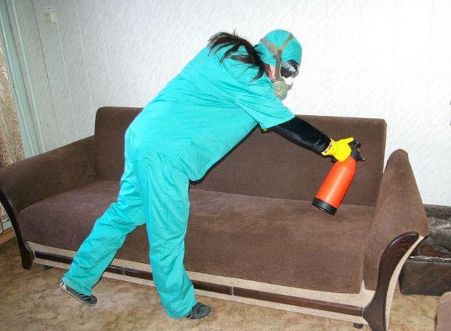 Клопы имеют свойство адаптироваться к химикатам