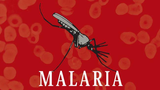 Малярия передается через укусы насекомых