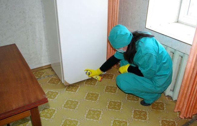 Довольно часто для борьбы с муравьями в доме используют спреи