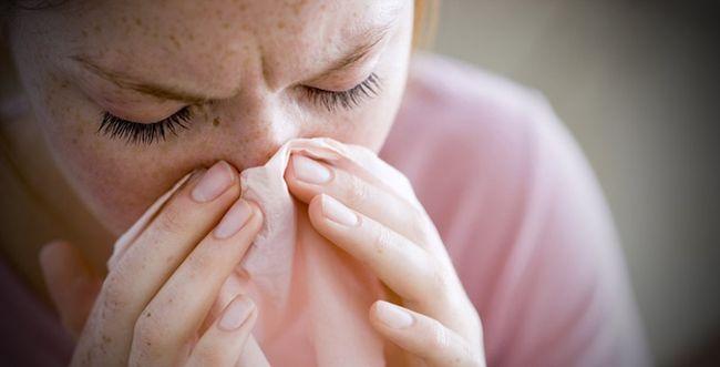Плесень может вызвать у человека ряд необратимых заболеваний