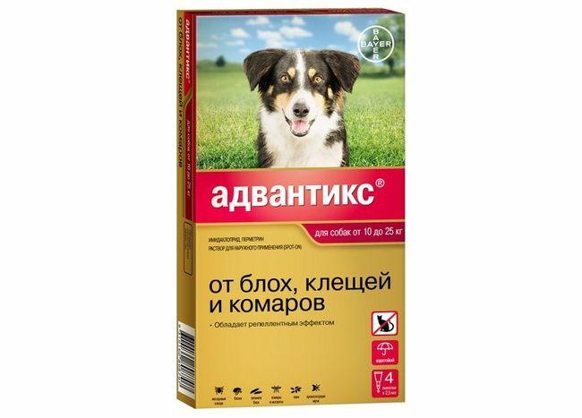 """Капли """"Адвантикс"""" хорошо защищают собаку от клещей"""