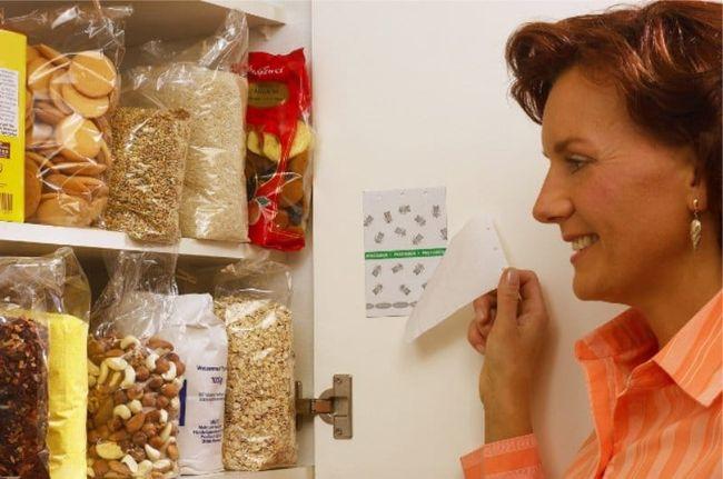 Для избавления пищевой моли есть множество ловушек и аэрозолей