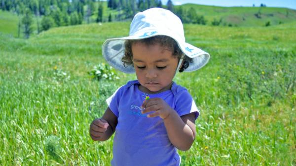 Реакция на укус мошки у детей может проявляться гораздо интенсивнее, чем у взрослых. Это требует более серьезной лекарственной терапии, поэтому при значительном отеке и болезненности обязательна консультация педиатра