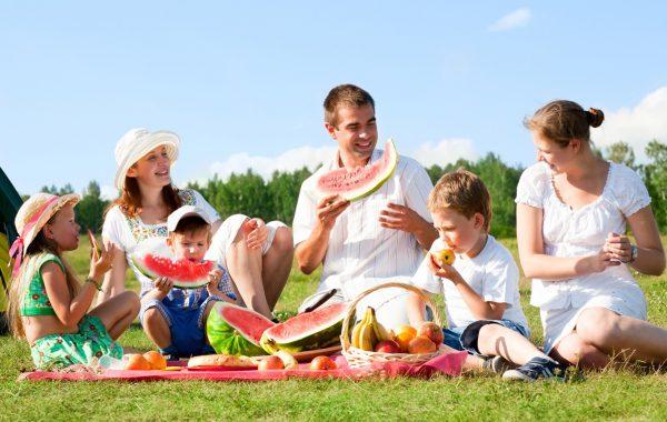 Следует знать, что шершни гораздо более нервны и агрессивны в жаркие дни. Раздражителями могут быть также резкие запахи (например, духи) и алкоголь. Яркая контрастная или темная одежда также привлекает шершней