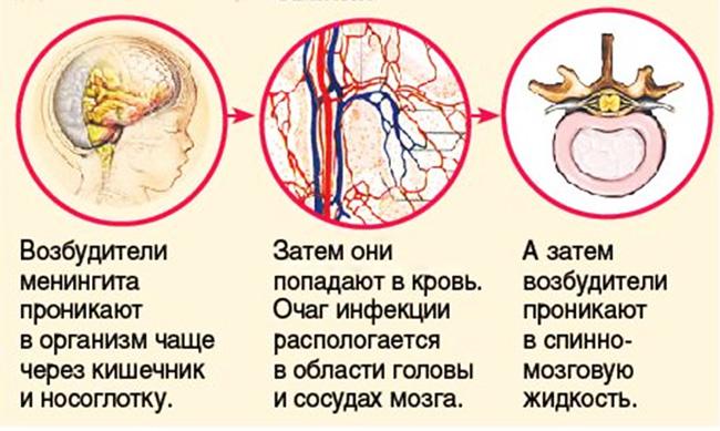 Процесс инфицирования