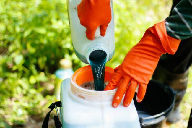 Бордосская жидкость является очень эффективным в борьбе с различными заболеваниями растений
