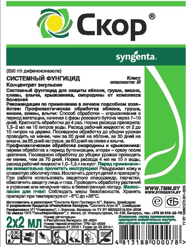 Стемный фунгицид Скор весьма успешно используется для уничтожения паразитических грибов