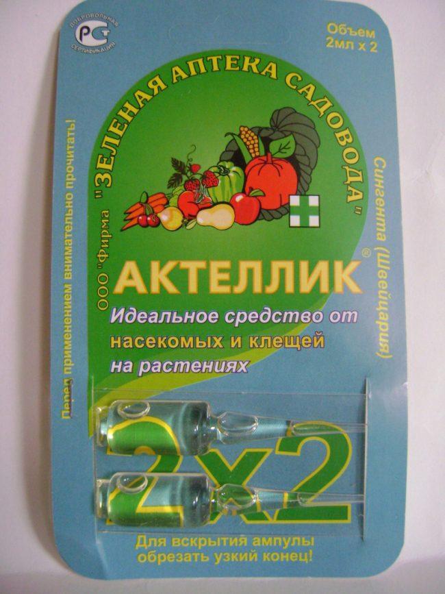 Клубнику можно обработать Актелликом, разбавив 2 мл вещества в воде – в 2 литрах