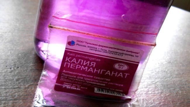 Обычная Марганцовка успешно применяется садоводами для опрыскивания кустов клубники от мучнистой росы и пенницы-слюнявки
