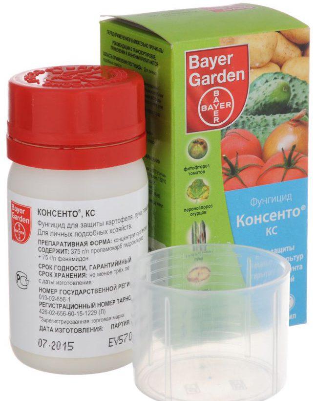 Лучше всего Консенто® подходит для профилактики заболеваний растений, то есть его лучше использовать до проявления признаков болезней, на ранних стадиях развития патогена