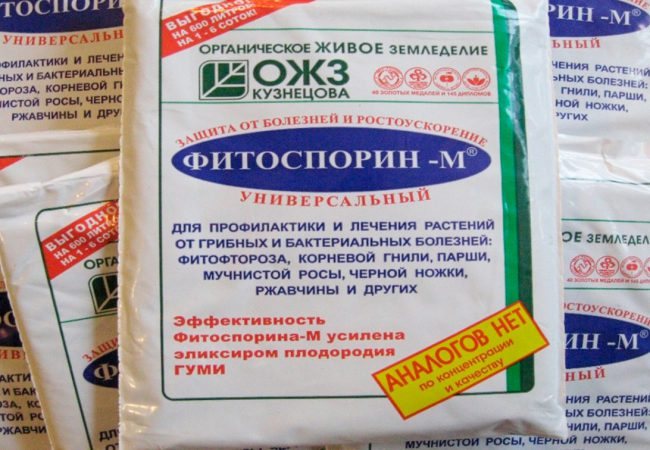 Фитоспорин-М относится к системным препаратам, способным распространяться по сосудистой системе растений. Его основа - споровая культура, продуктами своей жизнедеятельности подавляет размножение возбудителей грибных и бактериальных болезней растений