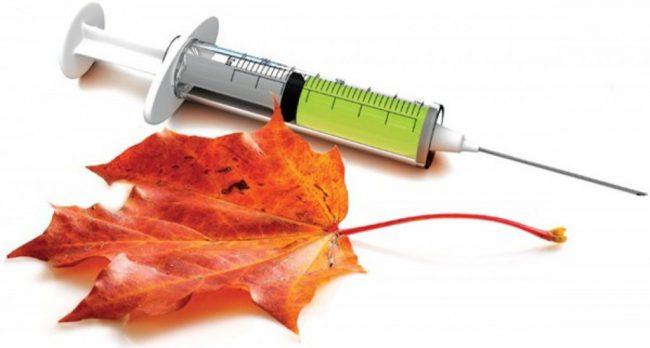 Период с середины осени до начала весны традиционно считается сезоном повышенной заболеваемости гриппом. В это время особенно важно помочь своему организму противостоять вирусам