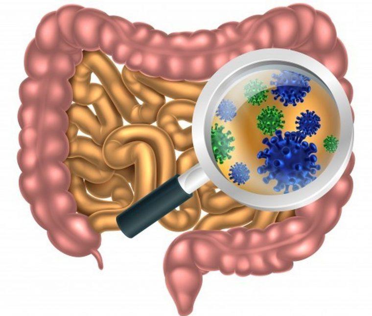 Тетрациклин назначается для лечения кишечных инфекций